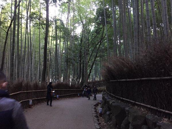 chikurin-arashiyama-007.jpg