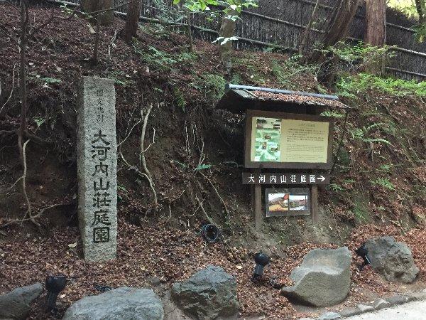 chikurin-arashiyama-015.jpg