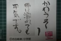 20181009-01_Kawauso_Package.jpg