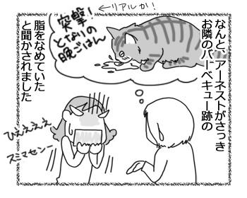 01022017_cat2.jpg