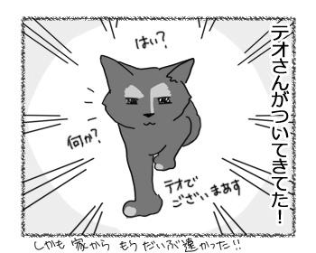 10022017_cat2.jpg