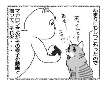 11012017_cat2.jpg