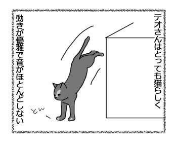 12012017_cat1.jpg