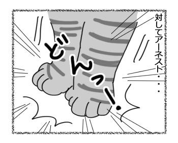 12012017_cat3.jpg