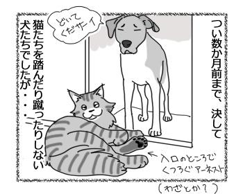18012017_cat1.jpg
