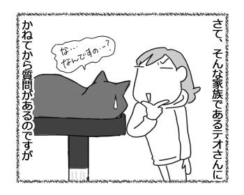 23012017_cat3.jpg