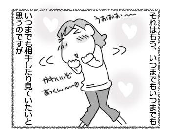 24012017_cat3.jpg