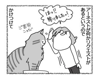 25012017_cat1.jpg