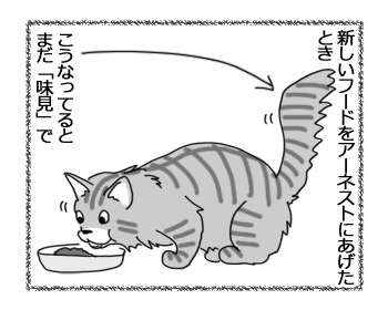 26012017_cat3.jpg