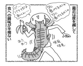 31012017_cat2.jpg