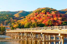 arashiwama0008888855555355.jpg